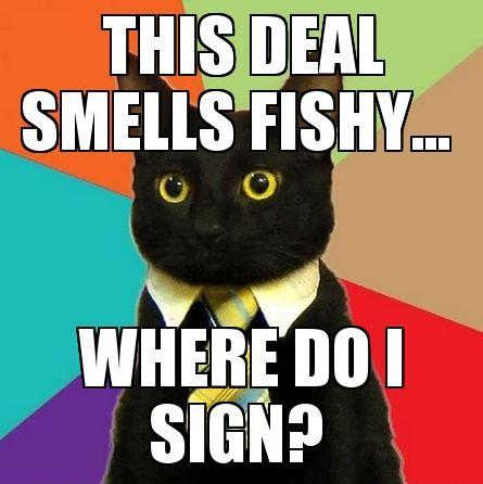deal-business-cat